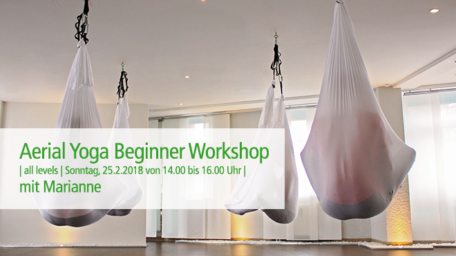 Aerial Yoga Beginner Workshop